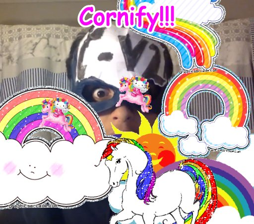 The most super great awesome awesome unicorn