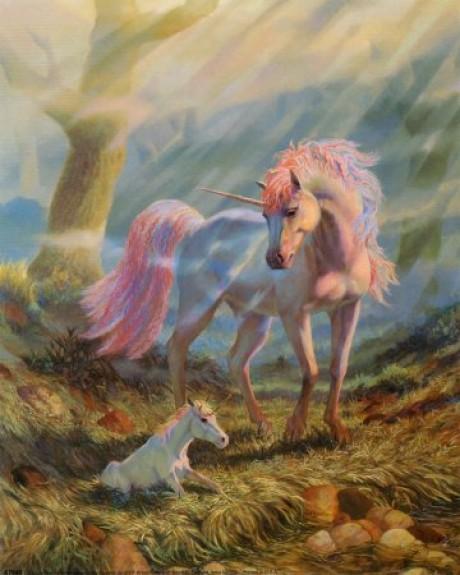 Unicorn and Foal