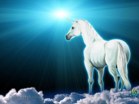 The Unicorn Light