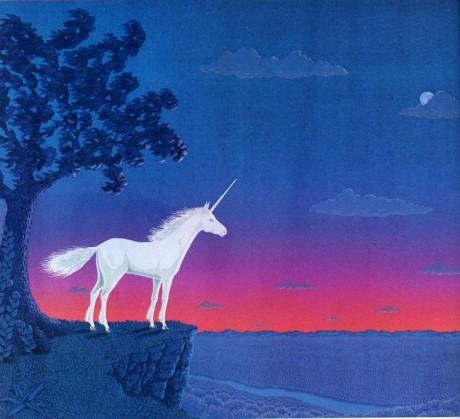 Unicorn enjoying the Sunset
